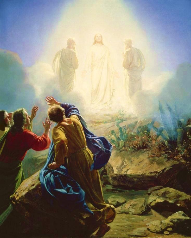 ET Abduction, Jesus' Creation, Blood Lines QHHT