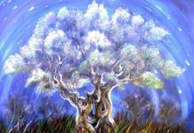 Tree - The Shift And The Different Levels of Consciousness QHHT