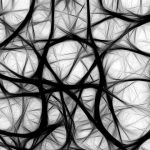 Unraveled Friday | A Collection From The World Wide Web