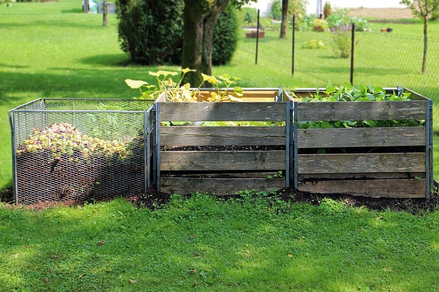 compost - The Benefits of Having Your Own Organic Garden