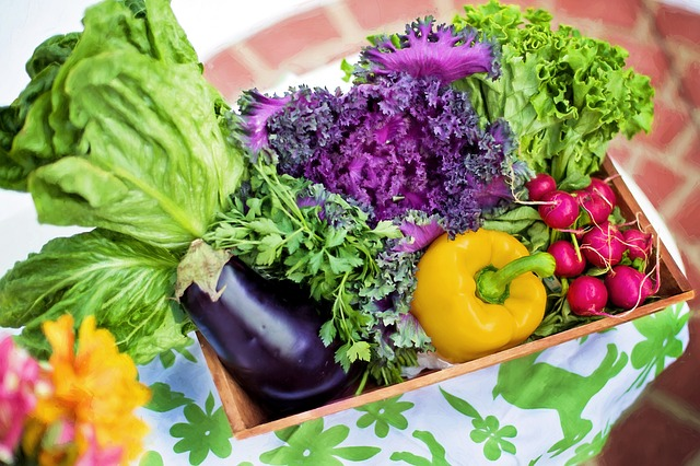 vegetables - The Benefits of Having Your Own Organic Garden