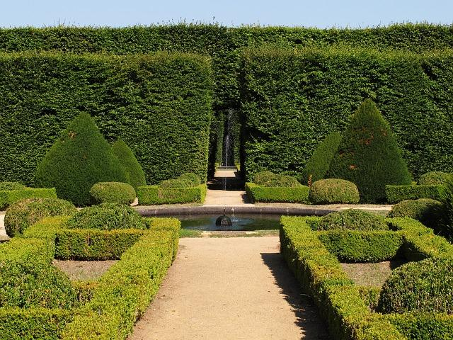 Boxwoods - A Guide to Using Plants Resistant to Fire and Strong Winds