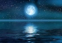 Beloved Full Moon Union