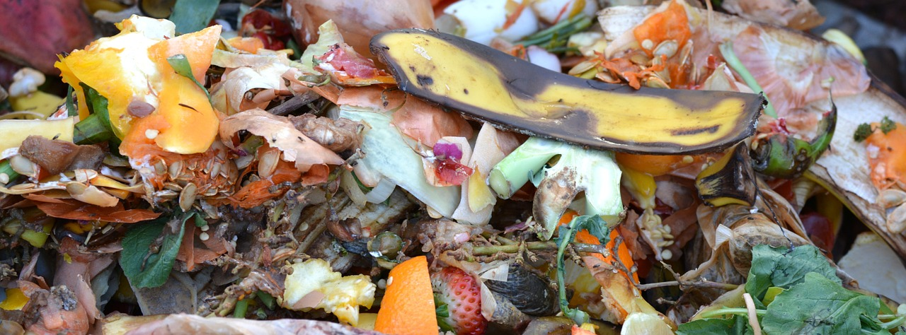 Compost - Completing the Cycle - A Guide to Composting in Urban Environments
