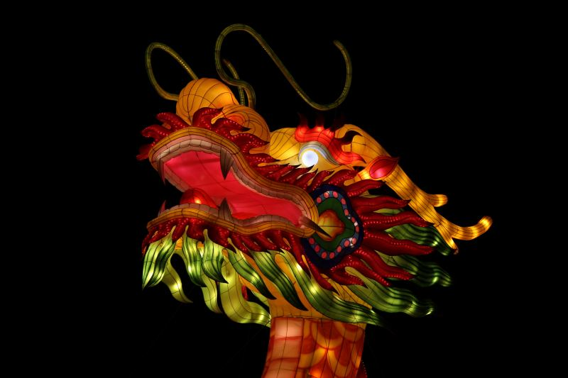Dragon - 2018 Chinese Astrology Animal Sign Forecasts 2