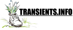 transients.info - Creation and Change During the Shift in Consciousness