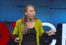How Human Noise Affects Ocean Habitats   Kate Stafford, TED Talk