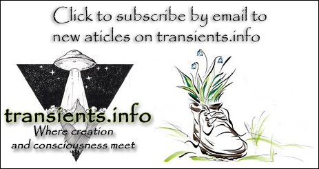 Subscribe to transients.info by Email