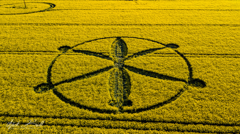 2-introduction-and-decoding-of-crop-circles-circle-of-may-8-willoughby-hedge