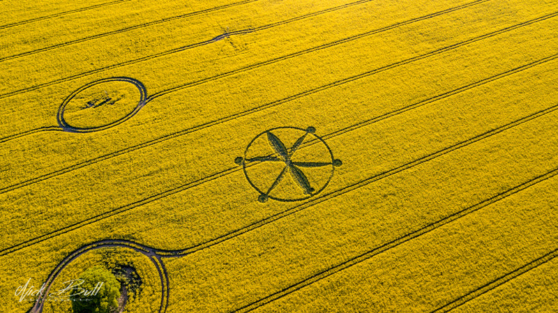 3-introduction-and-decoding-of-crop-circles-circle-of-may-8-willoughby-hedge