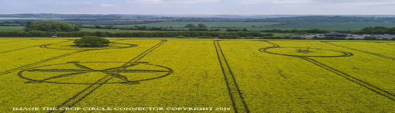 introduction-and-decoding-of-crop-circles-circle-of-may-8-willoughby-hedge