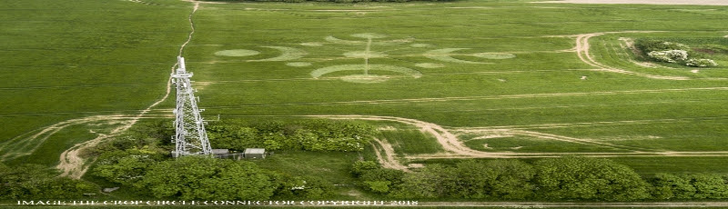 Crop Circle in Buckland Down, Dorset (England) from May 26